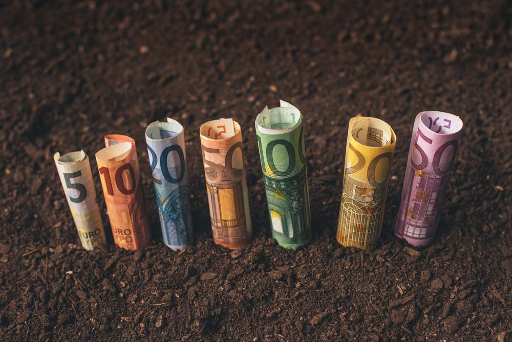 come chiedere un prestito